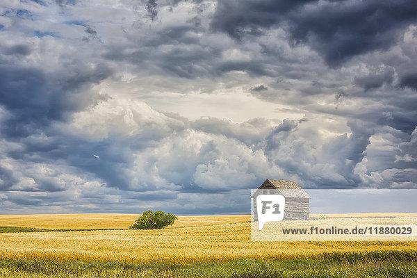 'Abandoned building along the roads of rural Saskatchewan; Saskatchewan  Canada'