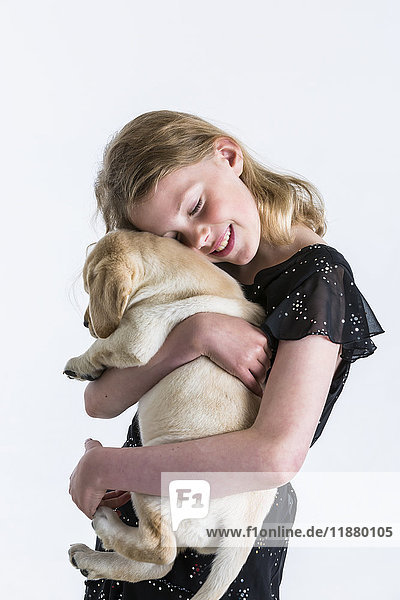 'A smiling young girl hugs a Labrador puppy against a white background; Anchorage  Alaska  United States of America'
