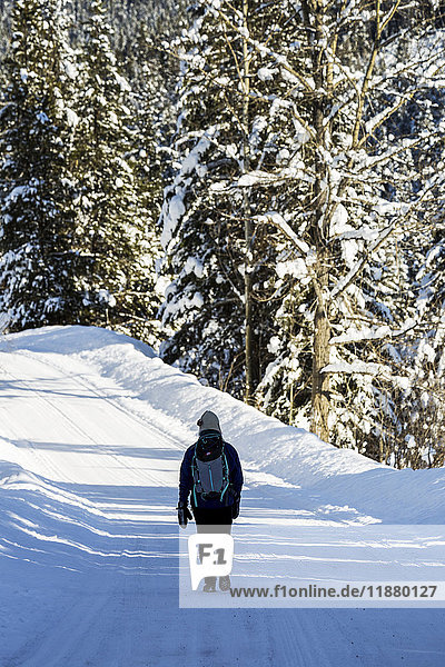 'Female walking along snow covered road with snow covered trees; Invermere  British Columbia  Canada'