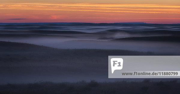 'Sunrise colour and fog coat the Grasslands National Park in an eerie mist; Saskatchewan  Canada'