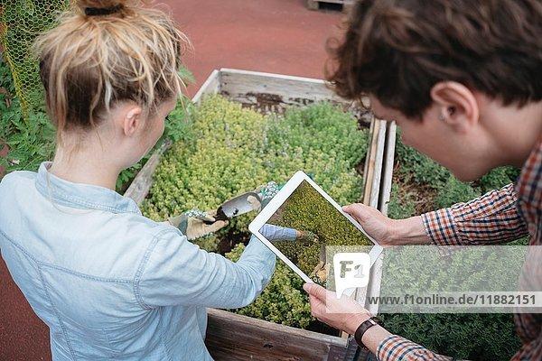 Mann benutzt digitales Tablett  um Frau bei der Gartenarbeit zu fotografieren