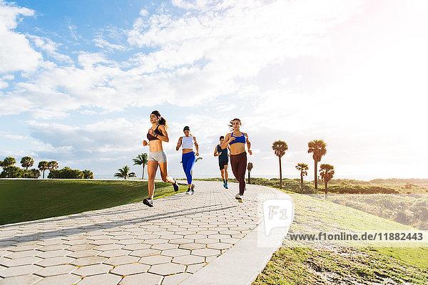 Gruppe von Freunden beim Training  Laufen  im Freien  niedriger Blickwinkel  Point Park  Miami Beach  Florida  USA