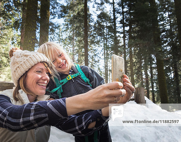 Mother and son taking selfie  Sequoia National Park  California  US