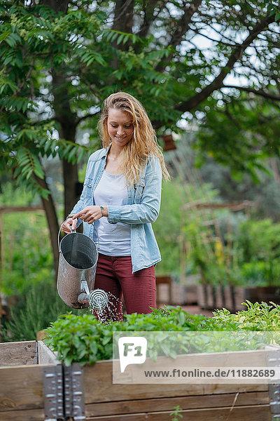 Junge Frau gießt Pflanzen im Trog  mit Gießkanne