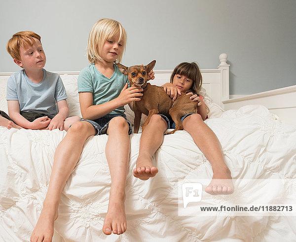 Children sitting on bed stroking dog