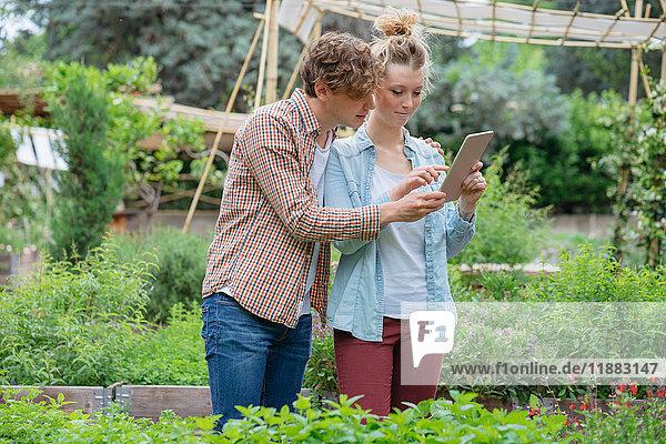 Junger Mann und Frau im Stadtgarten  fotografieren Pflanzen mit einem digitalen Tablett