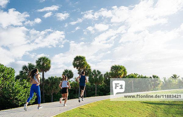 Drei Freunde  laufen zusammen im Freien  Rückansicht  South Point Park  Miami Beach  Florida  USA