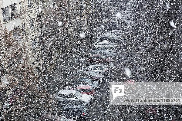 Hochwinkelansicht von Autos  die bei Schneefall von kahlen Bäumen auf der Straße geparkt wurden  Berlin  Deutschland