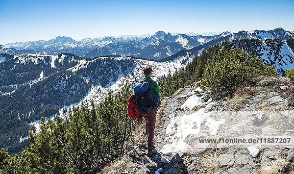 Wanderer auf dem Wanderweg zur Brecherspitz  Schliersee  Oberbayern  Bayern  Deutschland  Europa