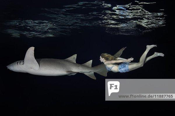 Junge schöne Frau schwimmt nachts mit Hai  Indopazifischer Ammenhai (Nebrius Ferrugineus)  Indischer Ozean  Malediven  Asien