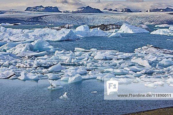 Gletscherlagune  Jökulsárlón  Austurland  Island  Europa