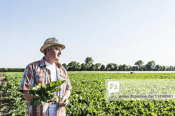 Senior Bauer mit Rübe vor einem Feld stehend