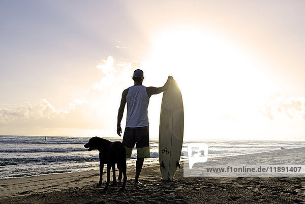 Rückansicht des Mannes mit Surfbrett und Hund beim Sonnenuntergang am Strand