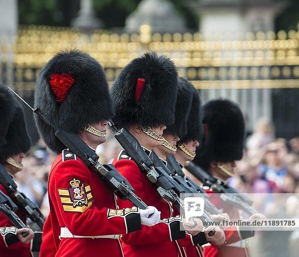 Gardisten der Royal Guard mit Gewehren  Königliche Garde  Wachablösung  London  England  Großbritannien  Europa