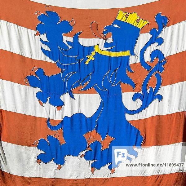 Wappen von Flandern auf einer Fahne  Brügge  Flandern  Belgien  Europa