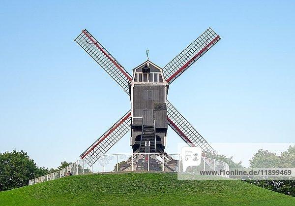 Sint-Janshuis-Mühle  Sint-Janshuismolen  Windmühle im Kruisvest-Park  Brügge  Flandern  Belgien  Europa