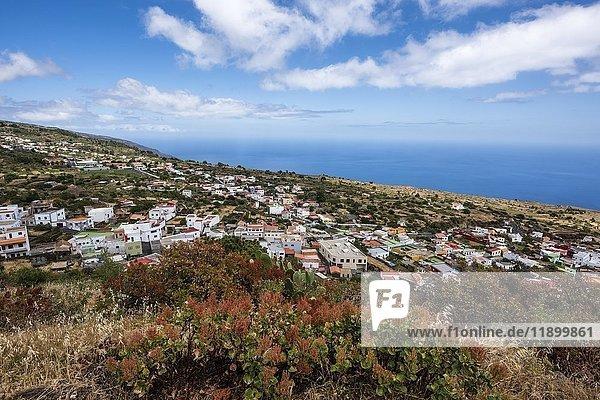 Ausblick auf Dorf Taibique mit weißen Häusern  vorne Pflanzen mit roten Blüten  Taibique  El Hierro  Kanarische Inseln  Spanien  Europa