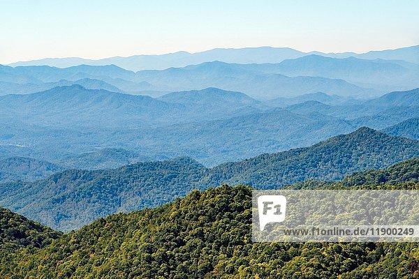 Blue Ridge Mountains vom Blue Ridge Parkway  Jackson County  North Carolina  USA  Nordamerika