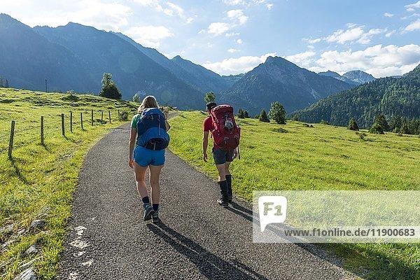 Wanderer auf einem Weg,  Ausblick auf Allgäuer Alpen,  Bad Hindelang,  Allgäu,  Bayern,  Deutschland,  Europa