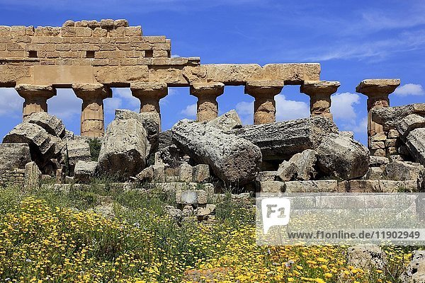 Remains of Greek temple  archaeological excavation site  Selinunte  Sicily  Italy  Europe