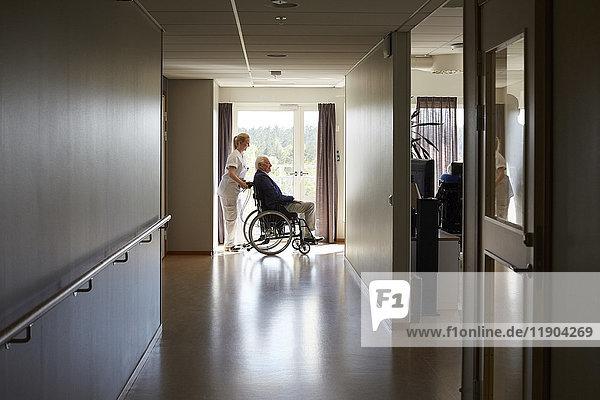 Durchgehende Seitenansicht der Krankenschwester  die den älteren Mann im Rollstuhl auf dem Flur des Krankenhauses schiebt.