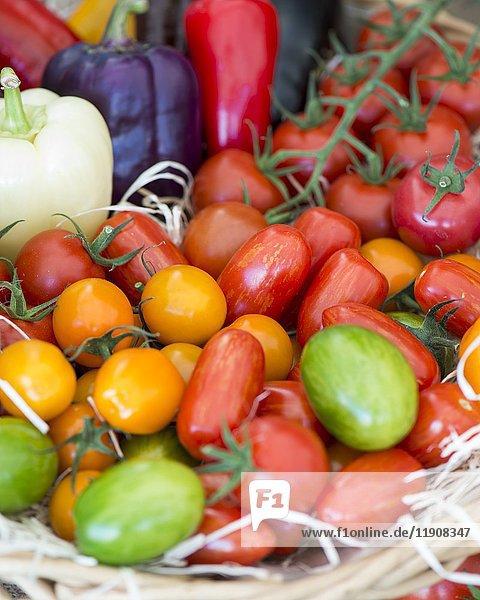 Verschiedene Tomaten auf dem Markt
