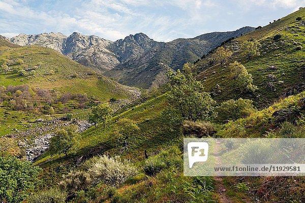Chilla gorge in the Sierra de Gredos. Avila. Castilla Leon. Spain. Europe.