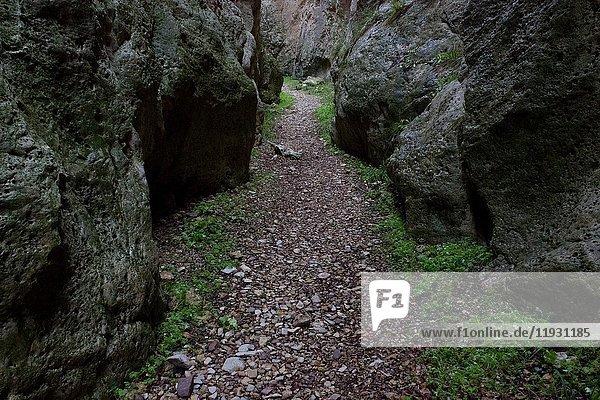 Barranco de Trancos (Trancos' gorge)  Villel  Teruel Province  Aragon  Spain