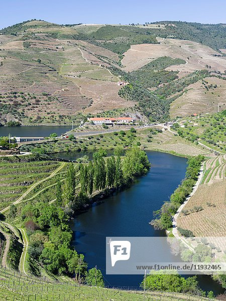Mouth of Rio Tedo into river Douro. The valley of river Douro. It is the wine growing area Alto Douro and listed as UNESCO World heritage. Europe  Southern Europe  Portugal  June.