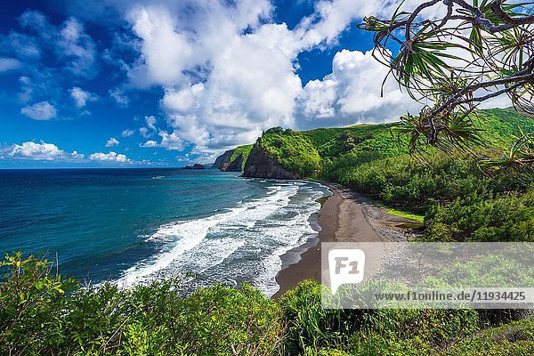 Pololu Valley and beach through hala trees (couple walking on beach)  North Kohala  The Big Island  Hawaii USA.