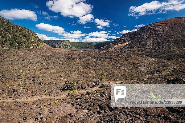 Hikers on the Kilauea Iki trail in the caldera  Hawaii Volcanoes National Park  Hawaii USA.