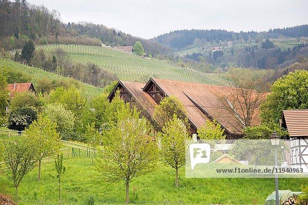 Sasbachwalden village Black forest Germany.