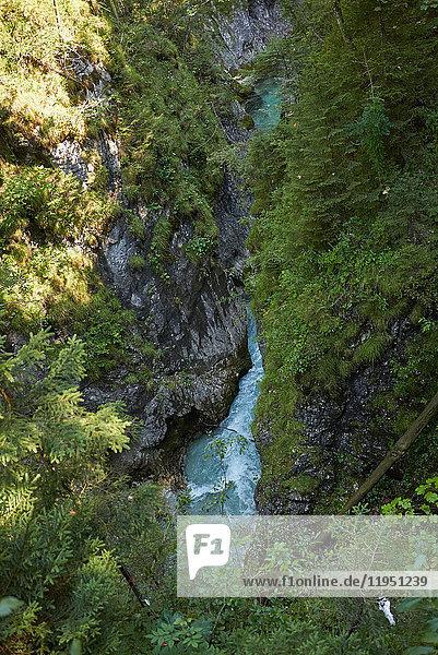 Germany  Bavaria  Mittenwald  Leutasch Gorge