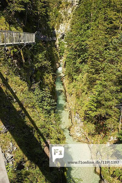 Deutschland  Bayern  Mittenwald  Leutaschklamm
