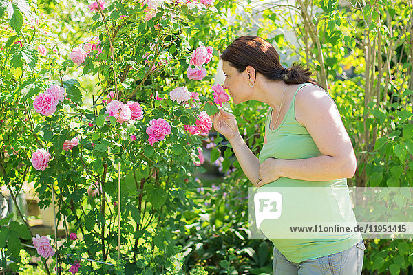 Pregnant woman smelling at roses