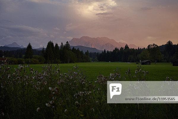 Deutschland  Bayern  Mittenwald  ländliche Landschaft mit Alpspitze bei Sonnenuntergang