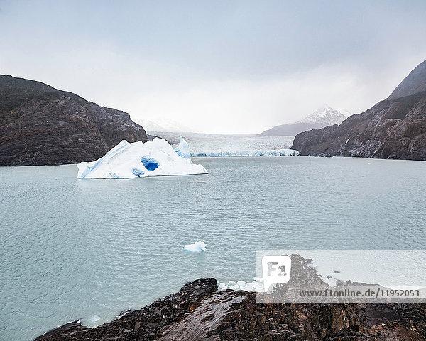 Auf dem Grey-See und Gletscher schwimmender Eisberg  Torres del Paine Nationalpark  Chile
