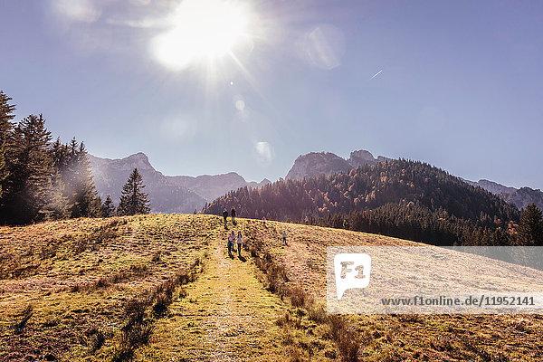 Sonnenferne Sicht von Erwachsenen und Kindern  die über die Hügellandschaft wandern  Bayern  Deutschland