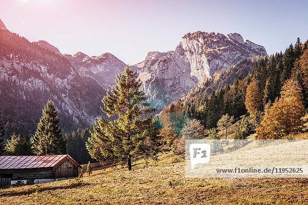 Sonnenbeschienene Feld- und Berglandschaft  Bayern  Deutschland
