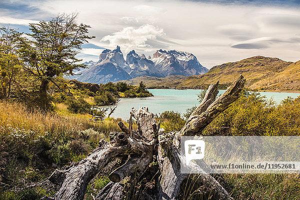 Berglandschaft mit dem Grauen See  Paine Grande und Cuernos del Paine  Nationalpark Torres del Paine  Chile