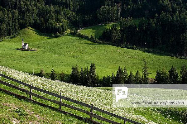 Blick auf das ferne Tal und die Kirche St. Johann  Funeser Tal  Dolomiten  Italien