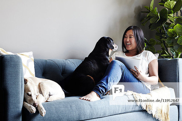 Woman sitting on sofa with pets dogs  using digital tablet  smiling
