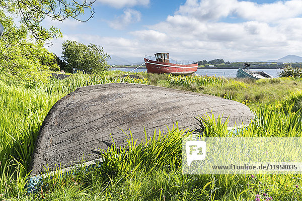 Wooden fishing boats in Roundstone  County Galway  Connacht province  Republic of Ireland  Europe