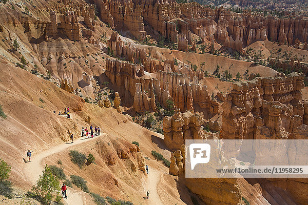 Hiking the Queens Garden Trail  Bryce Canyon National Park  Utah  United States of America  North America
