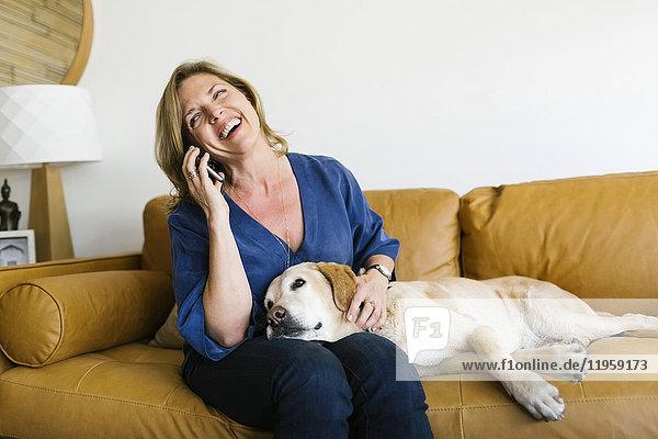 Woman stroking Labrador Retriever and using mobile phone
