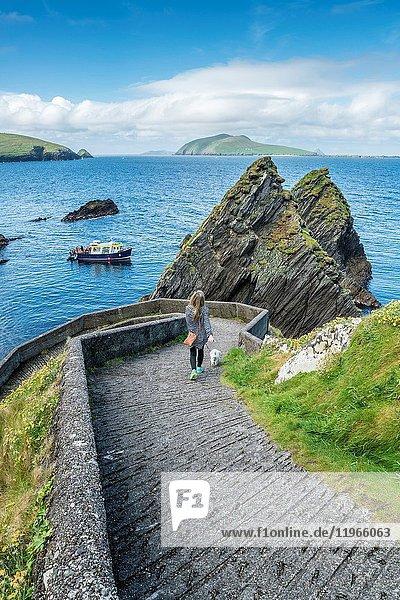 Dunquin pier  Dingle peninsula  County Kerry  Munster province  Ireland  Europe.