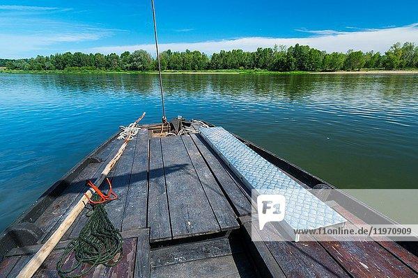 Traditional boat tour  Loire River  Chaumond-sur-Loire  Loir-et-Cher Department  The Loire Valley  France  Europe.
