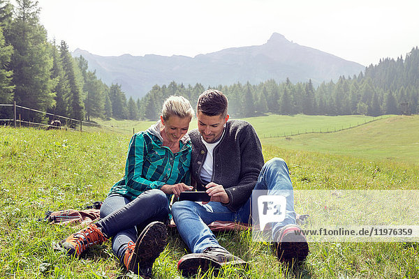 Couple sitting in field looking at smartphone  Tirol  Steiermark  Austria  Europe