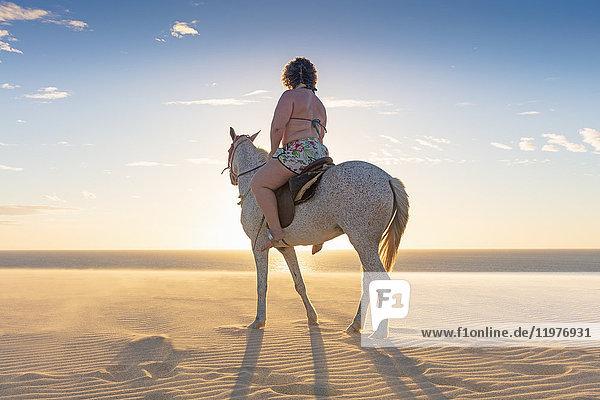 Woman riding horse on beach  rear view  Jericoacoara  Ceara  Brazil  South America