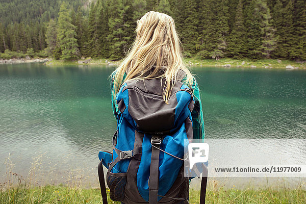 Rear view of hiker looking away at lake  Tirol  Steiermark  Austria  Europe